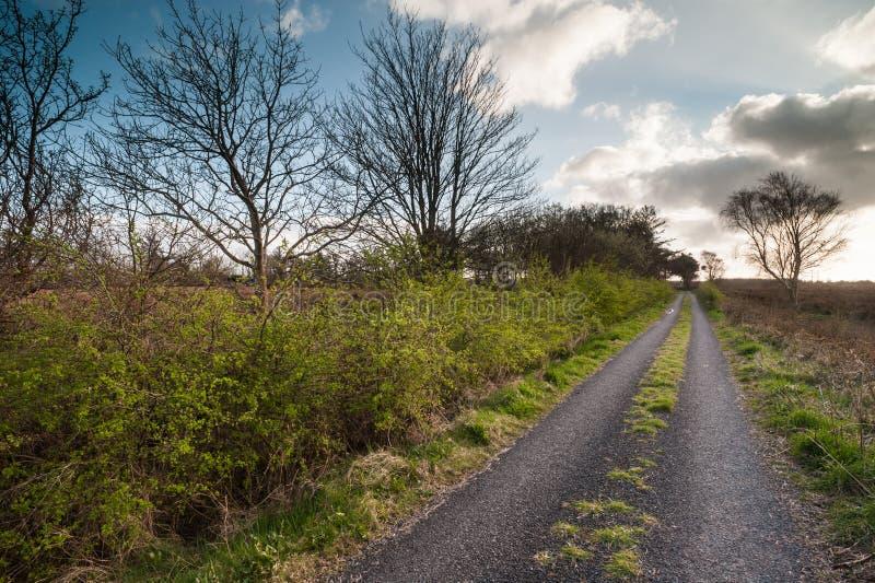 Vecchia strada rurale nella campagna irlandese immagini stock libere da diritti