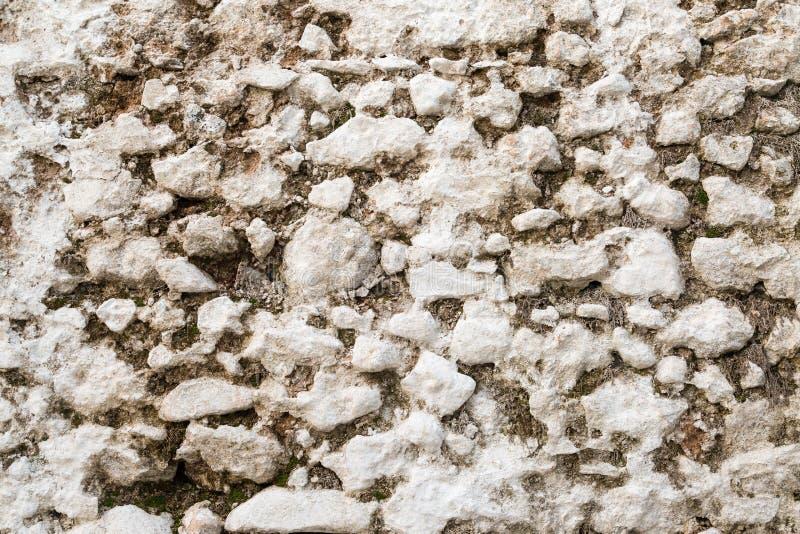 Vecchia struttura bianca della parete di pietra con muschio fotografie stock