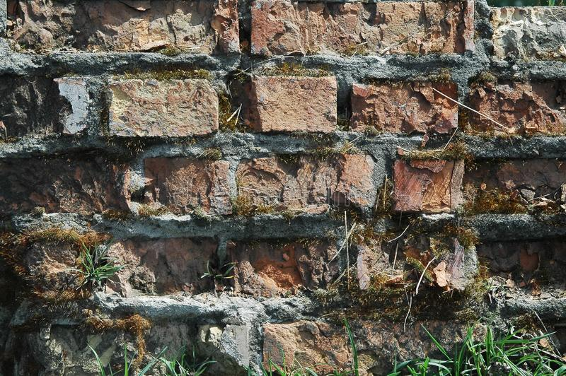 Vecchia struttura del fondo della parete di mattoni fotografia stock libera da diritti