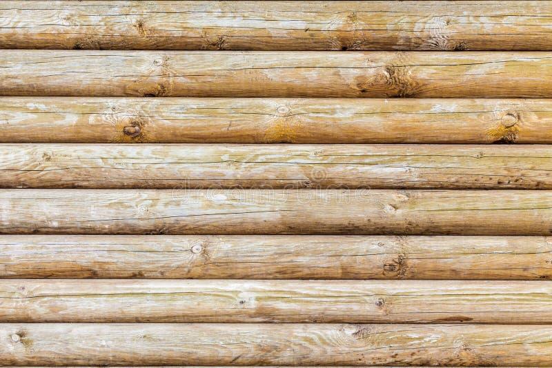 Vecchia struttura dell'albero dai ceppi fotografia stock libera da diritti