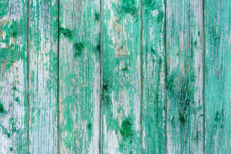 Vecchia struttura stupefacente bella di una parete di legno verde con pittura incrinata immagini stock