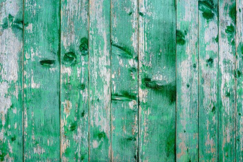 Vecchia struttura stupefacente bella di una parete di legno verde con pittura incrinata fotografia stock