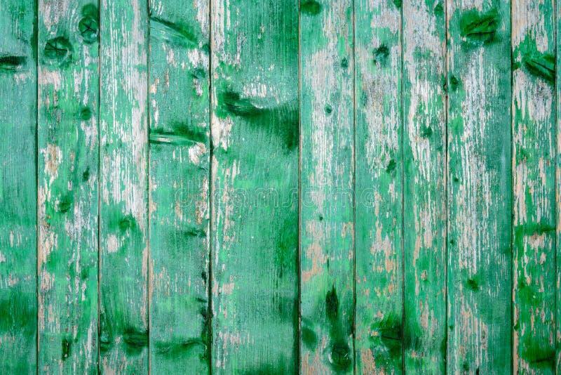 Vecchia struttura stupefacente bella di una parete di legno verde con pittura incrinata immagine stock