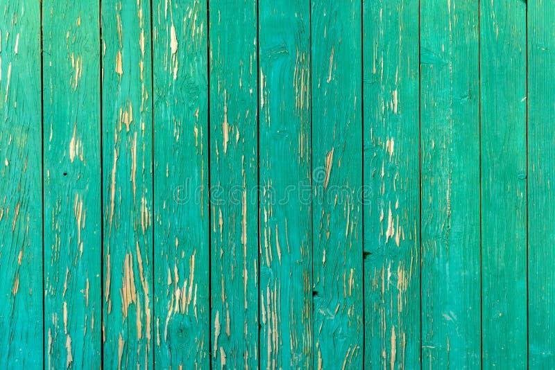 Vecchia struttura stupefacente bella di una parete di legno verde con pittura incrinata fotografia stock libera da diritti