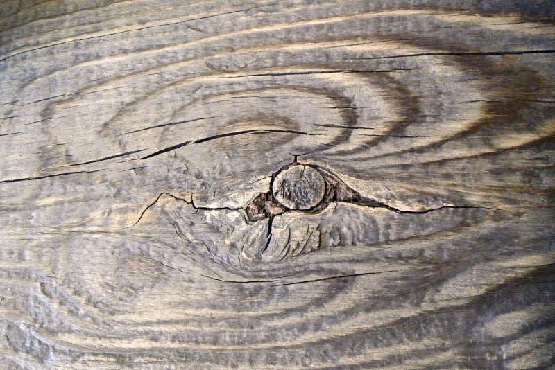 Vecchia superficie di legno, legno marrone con il nodo e grandi crepe immagine stock