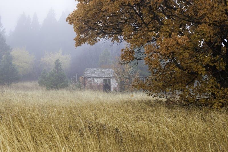 Vecchia tettoia in nebbia. immagini stock