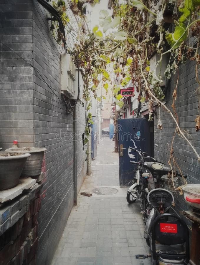 Vecchia via 2 del vicolo di Pechino fotografia stock libera da diritti