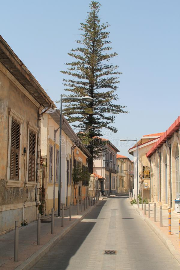 Vecchia via della citt? con le case tradizionali e l'albero alto fotografie stock libere da diritti