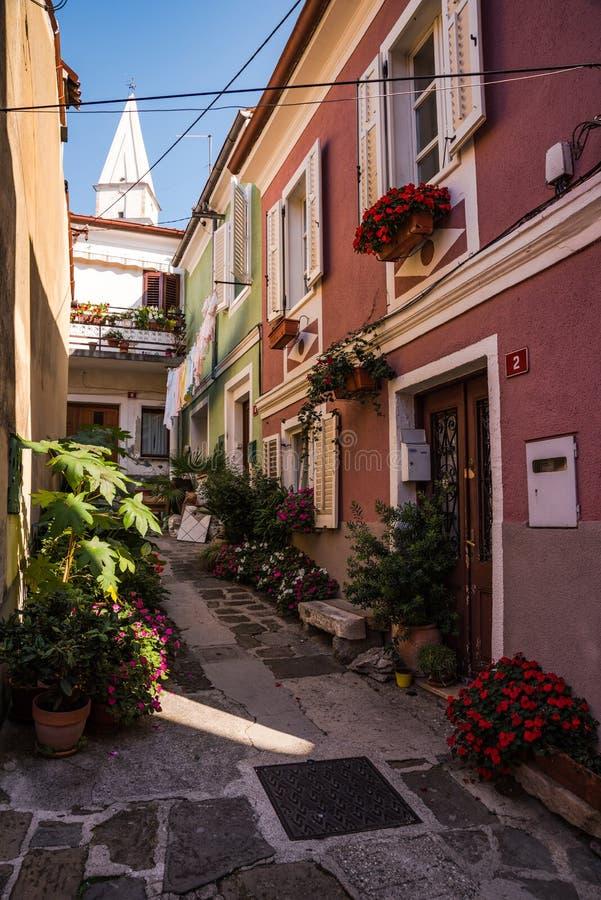 Vecchia via stretta in Isola, Slovenia fotografie stock libere da diritti