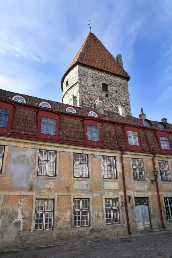 Vecchie case sulle vecchie vie della citt? tallinn L'Estonia fotografia stock