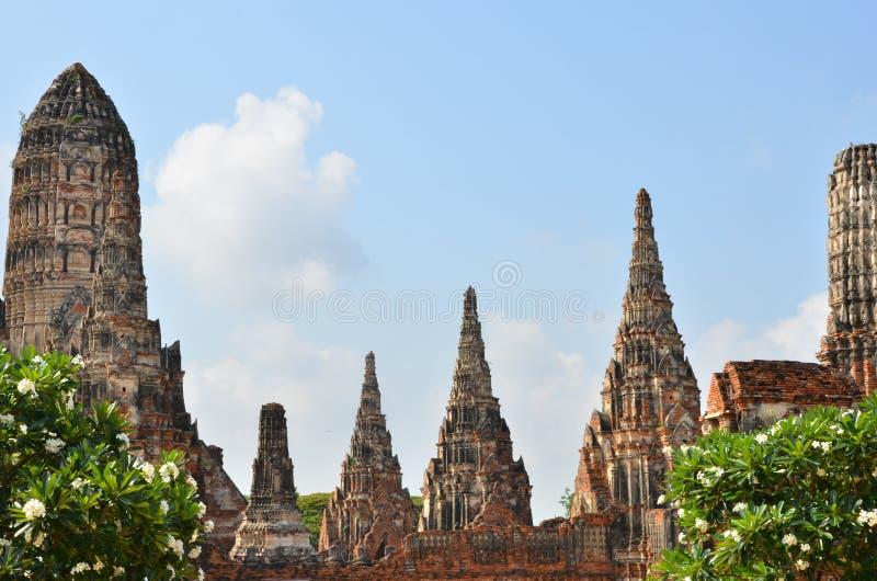 Vecchie cime della pagoda ed alberi verdi sul fondo del cielo blu fotografia stock libera da diritti