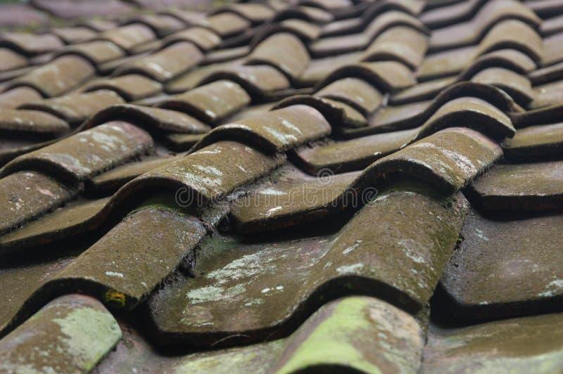 Vecchie mattonelle di tetto curvate immagini stock libere da diritti