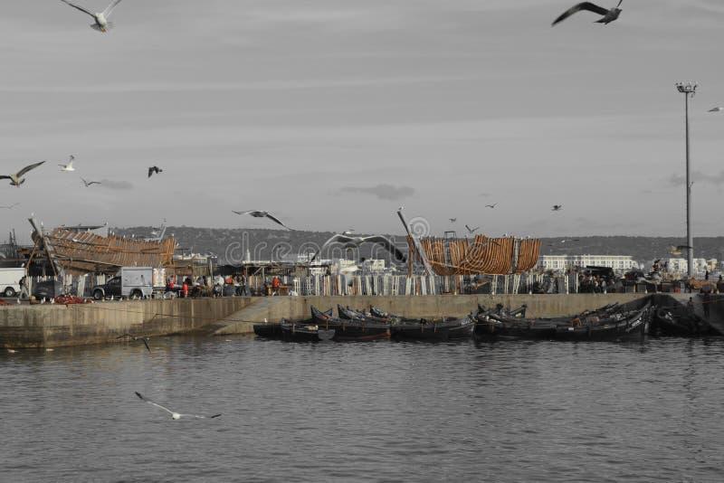 Vecchie navi, porto di Essaouira, Marocco fotografia stock libera da diritti