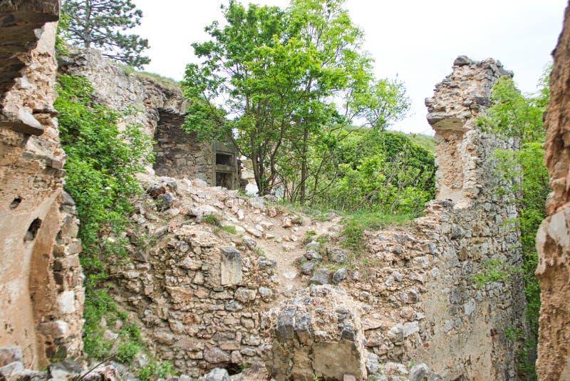 vecchie pareti da una rovina del castello con gli alberi fotografia stock libera da diritti