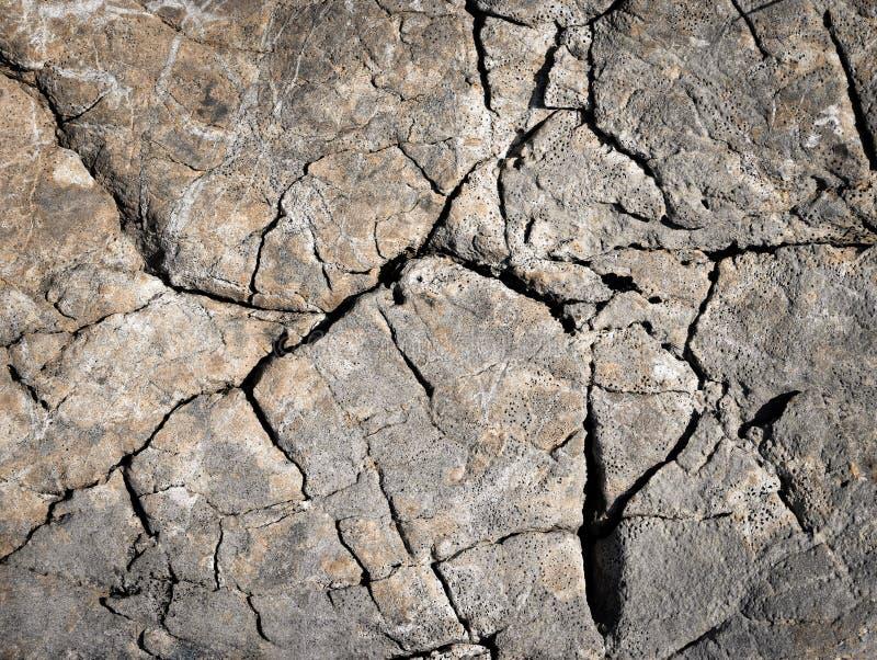 Vecchie scanalature irregolari delle rocce di superficie del calcare immagine stock libera da diritti