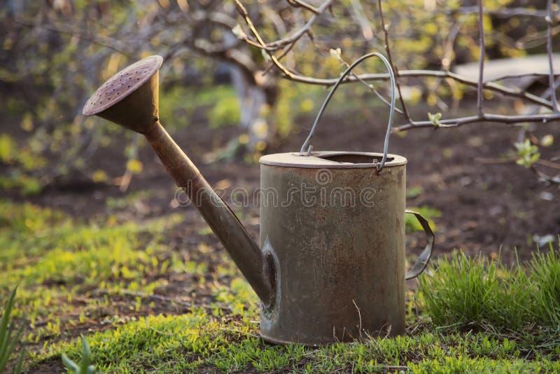 Vecchio annaffiatoio in giardino immagine stock immagine - Annaffiatoio da giardino ...
