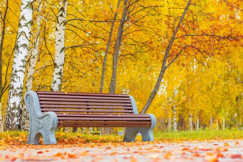 Vecchio banco di legno nel parco della città fondo d'annata naturale di autunno immagine stock libera da diritti