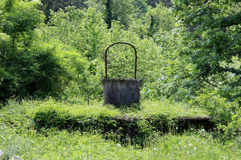 Vecchio calcestruzzo bene con l'arco del metallo completamente circondato con la vegetazione boschiva invasa immagini stock