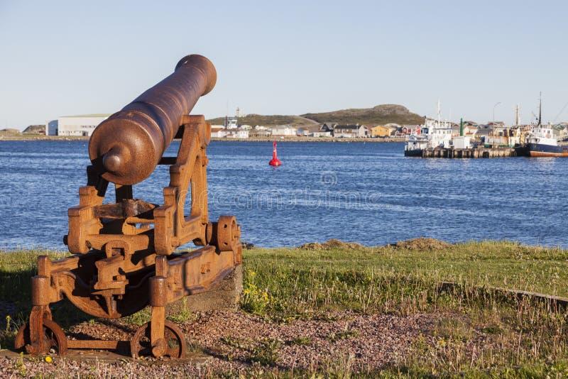Vecchio cannone in Saint Pierre immagine stock libera da diritti