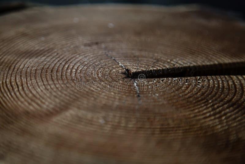 Vecchio cerchio di legno con un taglio di spaccatura del ceppo fotografie stock