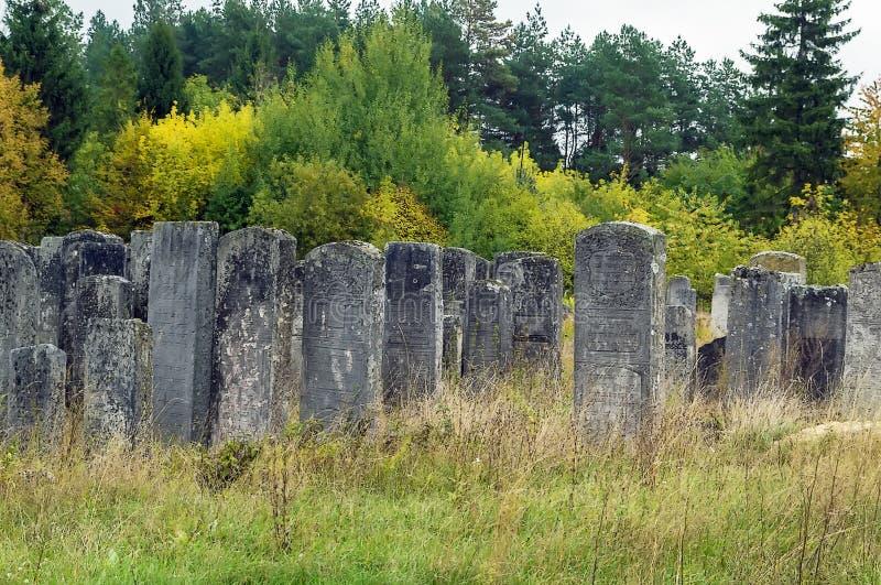 Vecchio cimitero ebreo, Brody, Ucraina fotografia stock libera da diritti