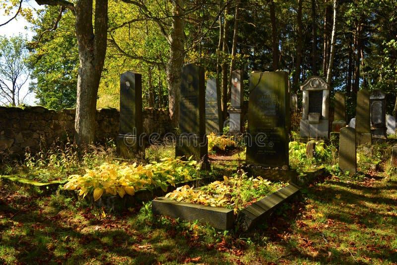 Vecchio cimitero ebreo nella foresta, Europa fotografia stock libera da diritti