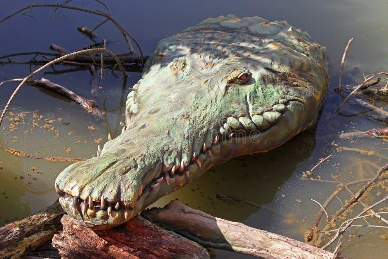 Vecchio coccodrillo fotografie stock