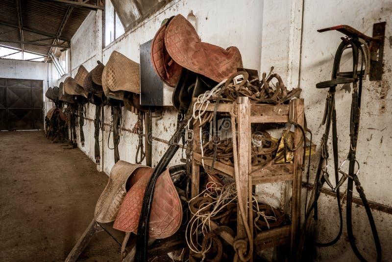 Vecchio corno all'interno con le selle appese al muro immagine stock