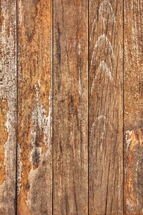 Vecchio dettaglio annodato incrinato marcio stagionato di struttura delle plance di Pinewood immagine stock