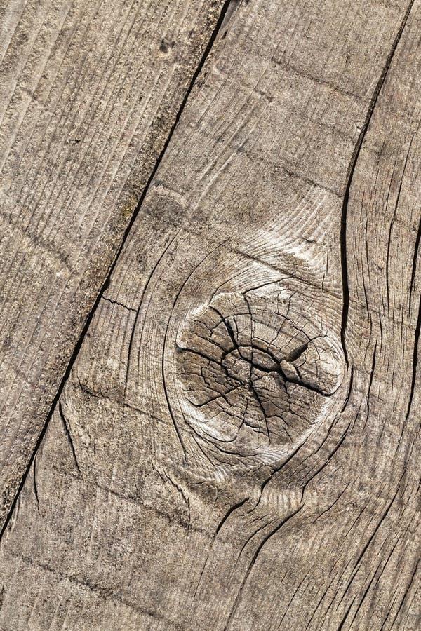 Vecchio dettaglio annodato incrinato stagionato di struttura di lerciume della tavola di pavimento di legno di pino fotografia stock libera da diritti