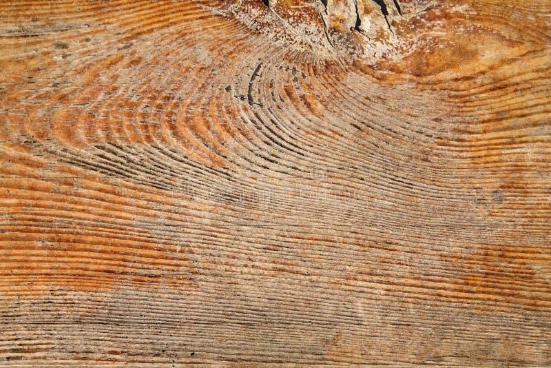 Vecchio dettaglio approssimativo annodato incrinato marcio stagionato di struttura di lerciume della plancia di Pinewood immagini stock