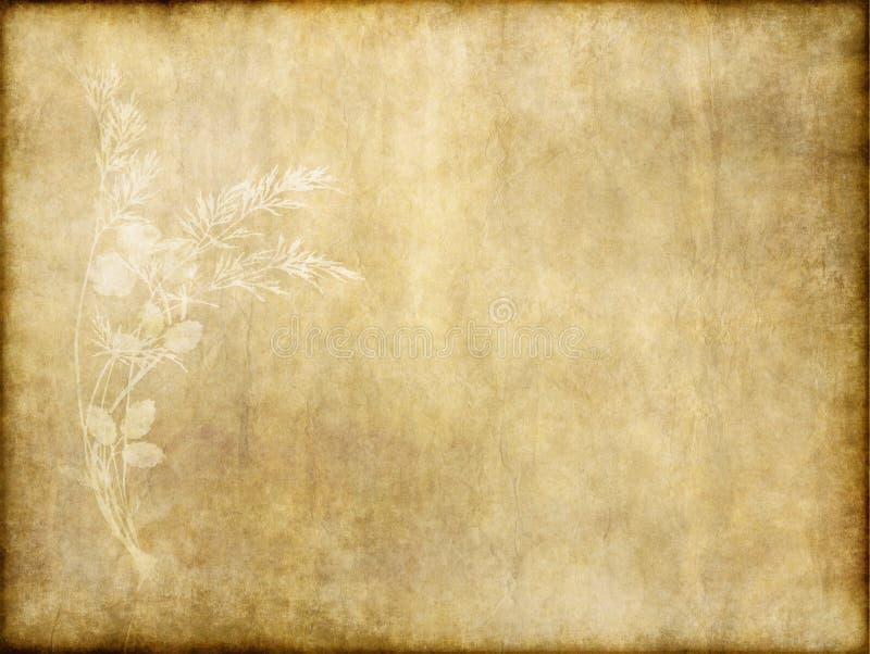 Vecchio documento con il disegno floreale immagini stock