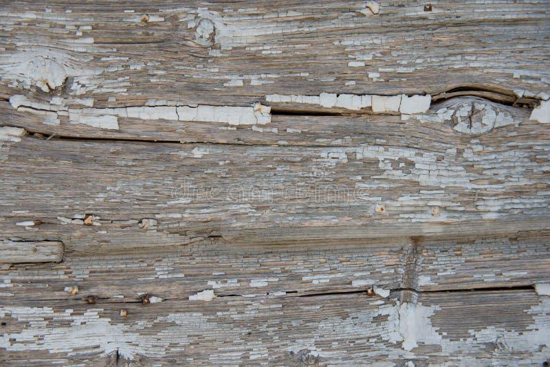 Vecchio fondo approssimativo di legno grigio, carta da parati fotografia stock
