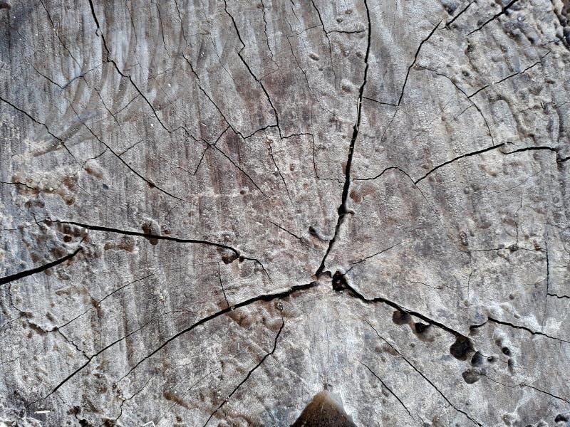 Vecchio fondo della superficie di legno di Brown immagini stock libere da diritti