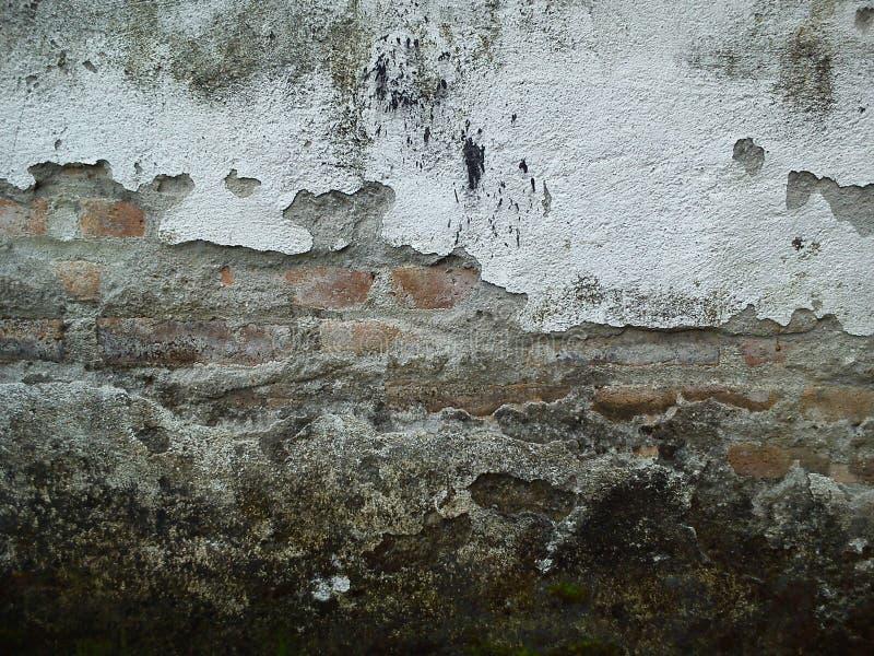 Vecchio fondo di bianco del nero del muro di mattoni fotografia stock