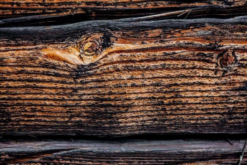 Vecchio fondo nero Lavagna, spazio per il vostro lavoro immagine stock
