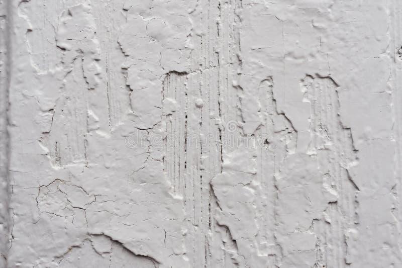Vecchio fondo rustico grigio chiaro dipinto di legno con la pittura della sbucciatura Painted ha scheggiato e struttura della sup fotografia stock libera da diritti