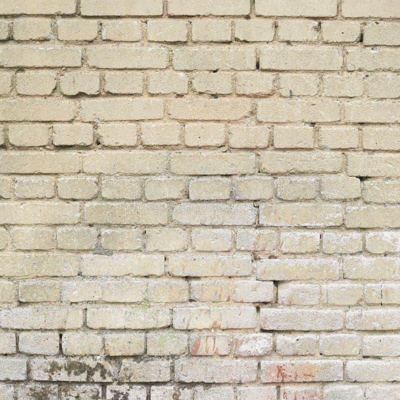 Vecchio frammento bianco del muro di mattoni immagini stock libere da diritti