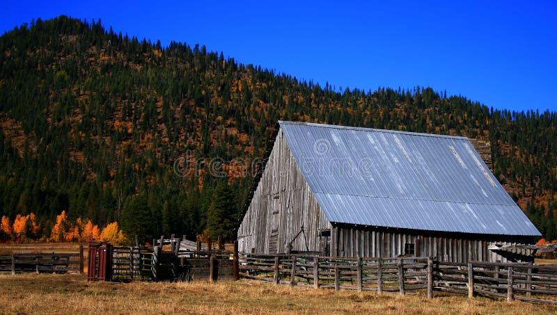 Vecchio granaio 2 dell'Idaho fotografie stock libere da diritti