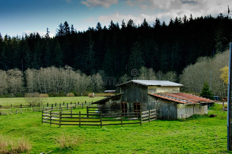 Vecchio granaio abbandonato rustico con un recinto per bestiame e un pascolo immagini stock libere da diritti