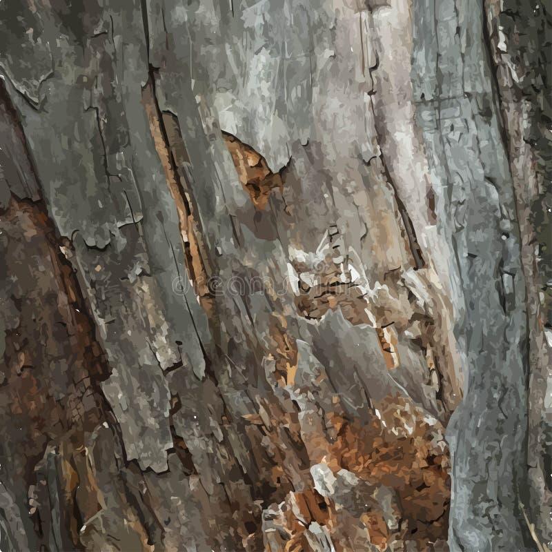 Vecchio legno del legname illustrazione vettoriale