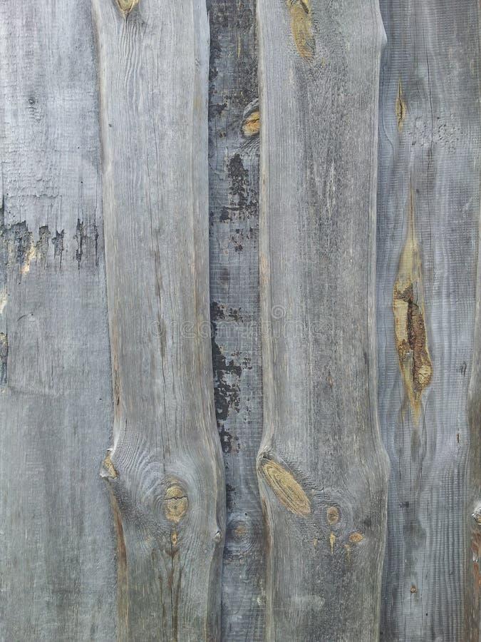 Vecchio legno grigio immagini stock