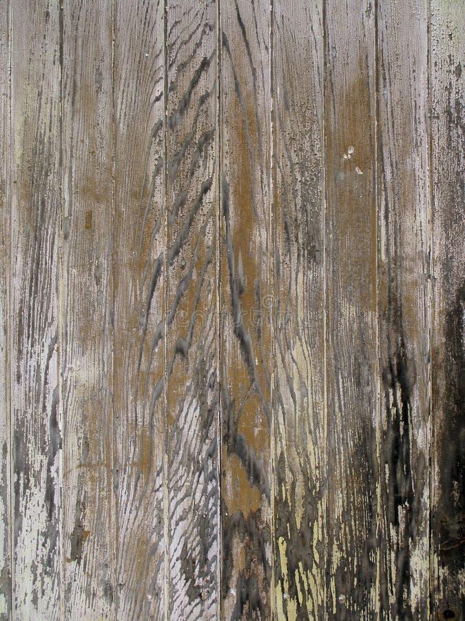 Vecchio legno macchiato di lerciume fotografia stock libera da diritti