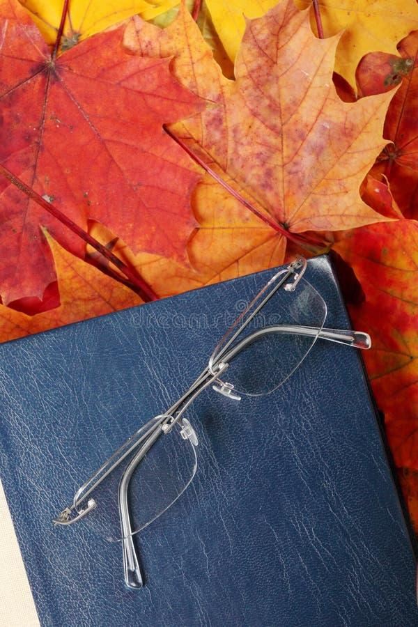 Vecchio libro e vetri immagini stock
