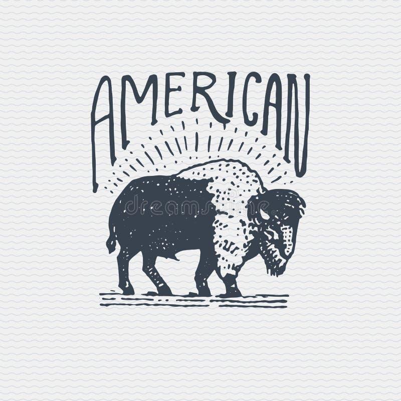 Vecchio logo d'annata o distintivo, stile disegnato a mano inciso e vecchio dell'etichetta con il toro selvaggio del bisonte amer illustrazione vettoriale