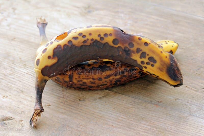 Vecchio, marrone, banane di decomposizione fotografia stock