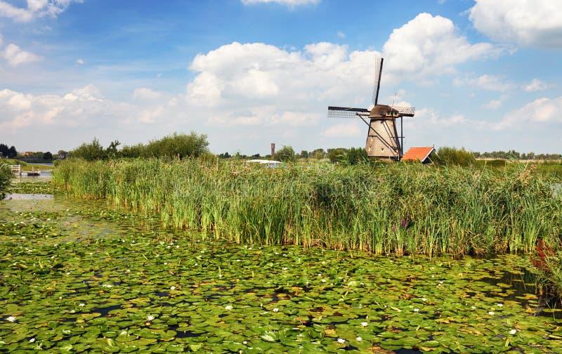 Vecchio mulino a vento Parco del mulino a vento di Kinderdijk netherlands fotografia stock