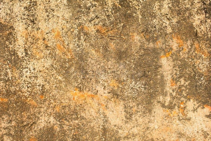 Vecchio muro di cemento avariato giallo bianco grigio con i punti arancio, i graffi profondi e le macchie di muschio e della muff immagini stock libere da diritti