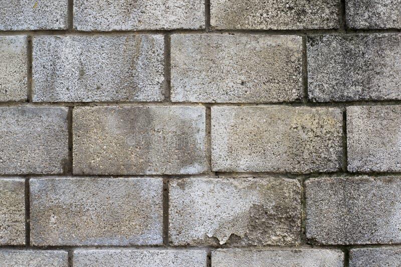 Vecchio muro di mattoni bianco vecchio e muro di mattoni sfilacciato fotografia stock libera da diritti