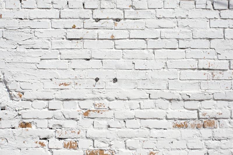 Vecchio muro di mattoni dipinto con pittura bianca fotografia stock